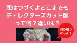 恋つづ(恋はつづくよどこまでも)のディレクターズカット版って?違いは何?